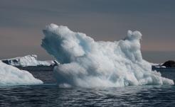 Small iceberg on the way to Bluff Island