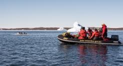 Cameraman Peter, gets footage of penguins 0n a ice floe
