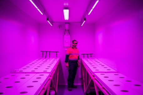 New Hydroponics building featuring Tony (DSL)
