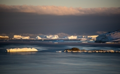 Ice bergs beyond Anchorage island