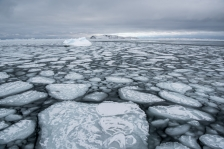 'Pancake' ice forming in the bay